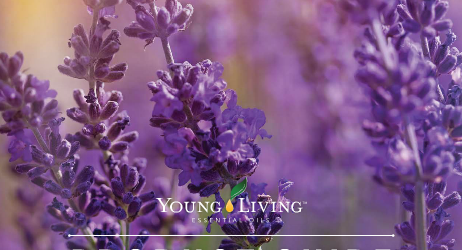 Young Living 2015 Product Guide
