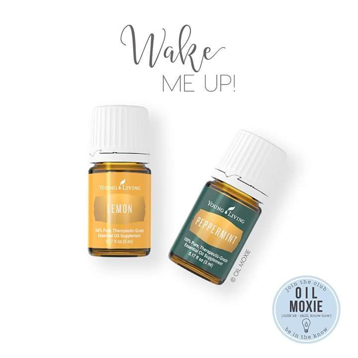 How To Use Essential Oils Wake Me Up April Masterson