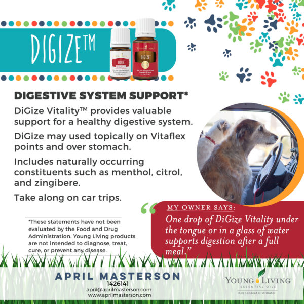 DiGize for Dogs