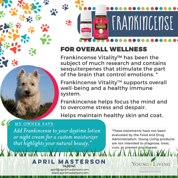 Frankincense for Dogs