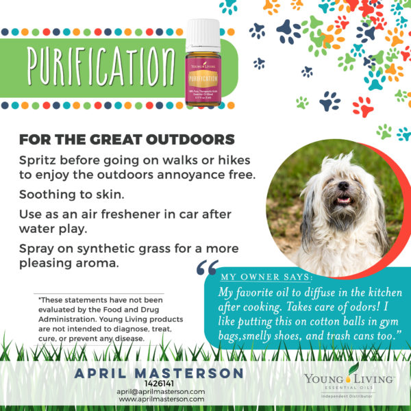 Purification and Dogs